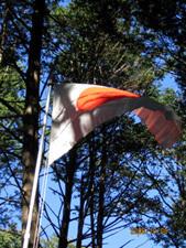 野営場の日章旗.jpg